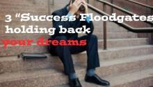 Success Floodgates